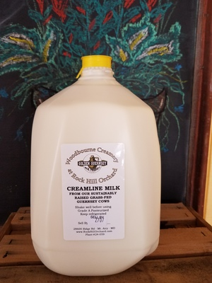 Milk - Regular - Gallon - Pick-up